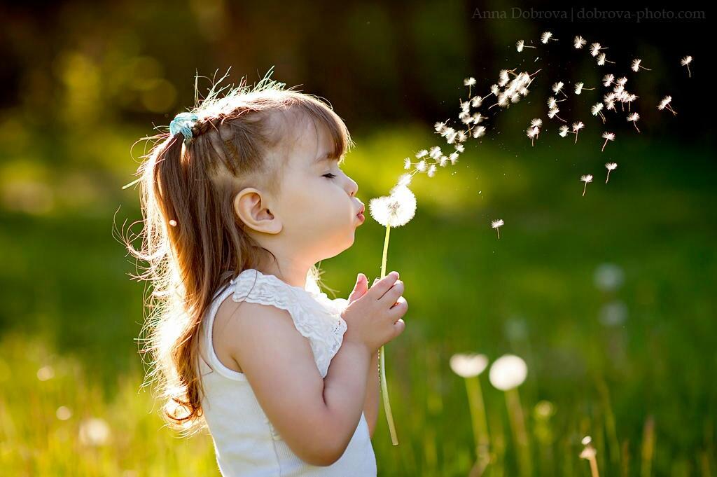 faith-like-a-child-dandelion